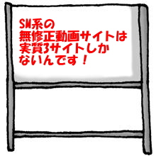 SM系無修正動画サイトについて(まとめ)