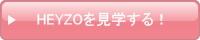 HEYZO(Heyzo.com)を見学する!