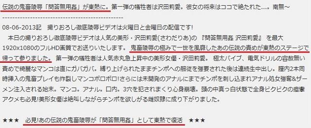 「問答無用姦 沢田莉愛」作品コメント