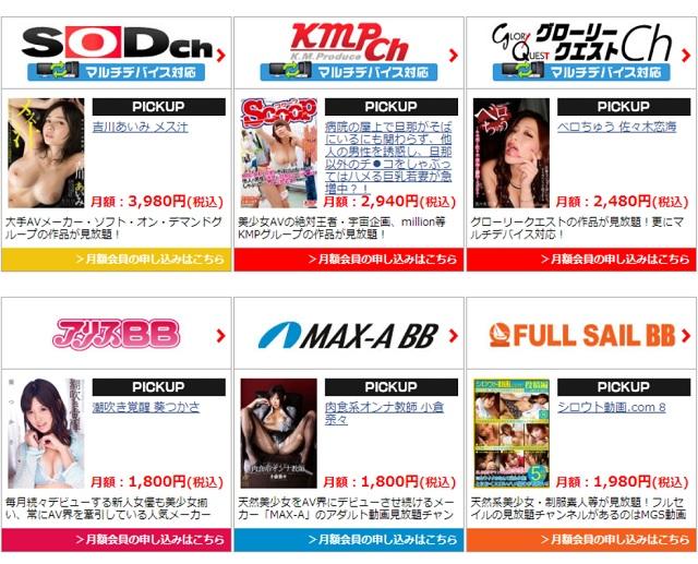 MGS月額定額制チャンネル2