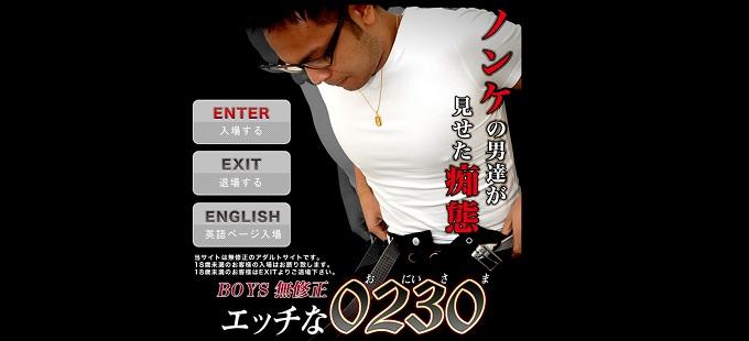 エッチな0230入会検討用検証データ
