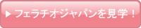 フェラチオジャパン(FellatioJapan.com)を見学!
