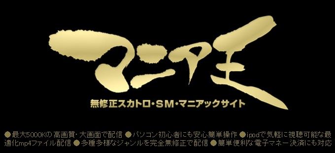 マニア王(mania-oh.com)入会検討用検証データ