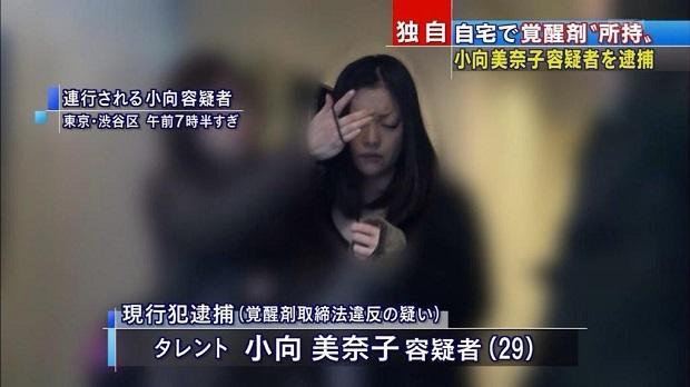 小向美奈子3度目の逮捕(2015年2月6日)