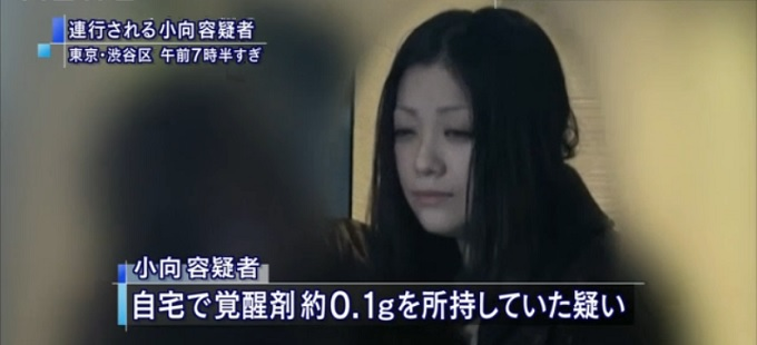 小向美奈子3度目の逮捕