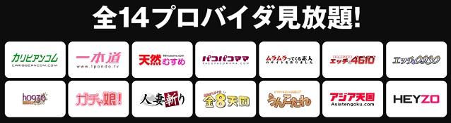Hey動画月額見放題プラン参加14サイト