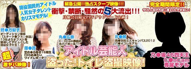 アイドル芸能人盗った!トイレ盗撮映像!バナー